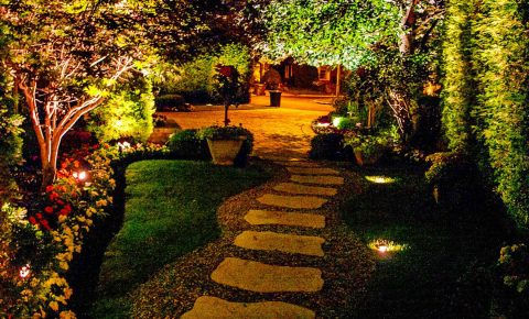 landscapelighting_plantingandgardens_walkwayandpatioandstaircase_3_1