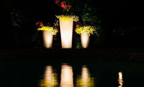 landscapelighting_potsandcontainers_3_1