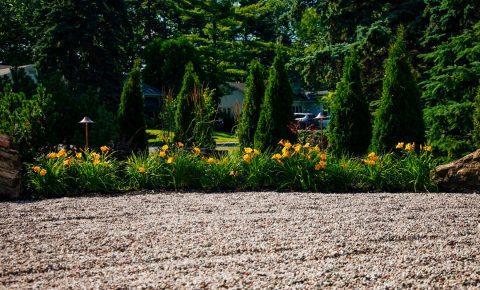 plantingandgardens_17_5