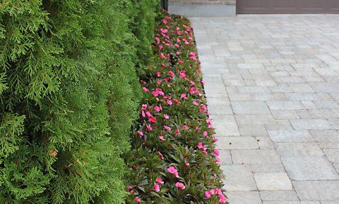 plantingandgardens_2_1
