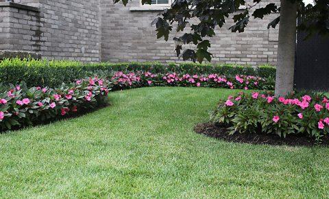 plantingandgardens_2_2