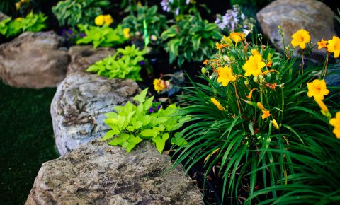 plantingandgardens_retainingwall_6_2