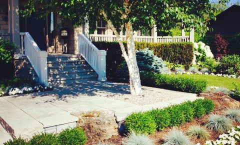 plantingandgardens_walkwayandpatioandstaircase_17_1