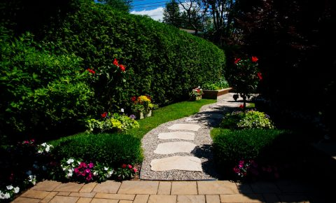 plantingandgardens_walkwayandpatioandstaircase_3_1